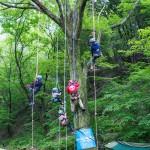 木に登ってキャンプ場を見わたす
