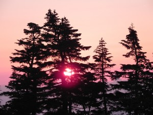 夕焼けは、なぜか故郷を連想する。安心するからかな。