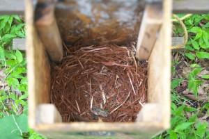 古い朽ちかけた巣箱を降ろすと、中にはムササビがつい最近まで寝床としていた痕跡がはっきり残っていた。