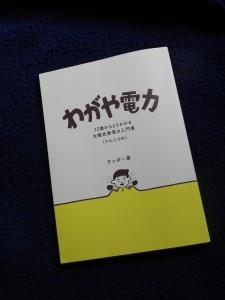 『わがや電力』(ヨホホ研究所)。1800円+税。オンラインで購入できるので、興味のある人は、『わがや電力』で検索してください。