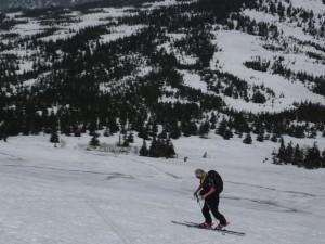 道から外れ、だれもいない山へ入っていく。そのことを思うだけで、幸せな気分で歩くことができる。