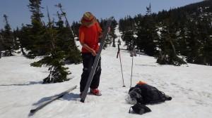スキーの滑走面にシール(滑り止め)を貼り、雪山を登る。 晴天の春山は、アロハシャツでも暑い。で、Tシャツ一枚で歩く。